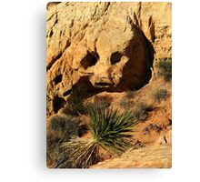 Stoned - Valley of Fire Canvas Print