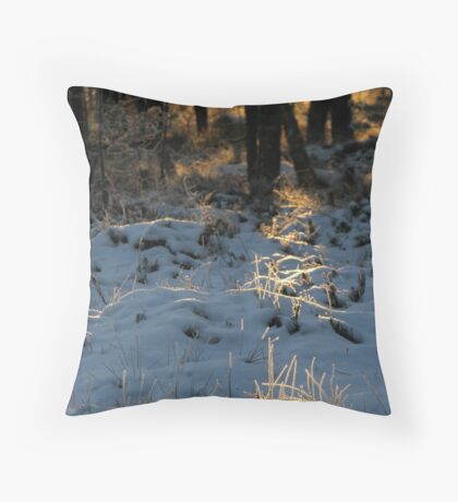 'Almost last light of the year II - Path to light' Throw Pillow