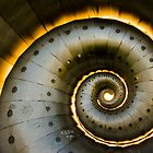 Ring of Fire by Jon Bradbury