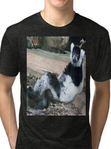 Leisurely Lemur Tri-blend T-Shirt