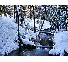 The Little Bear Creek = Alta, California Photographic Print