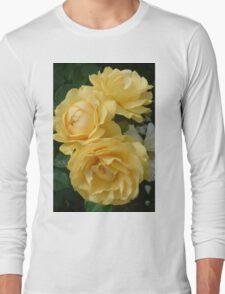 Absolutely Fabulous! Long Sleeve T-Shirt
