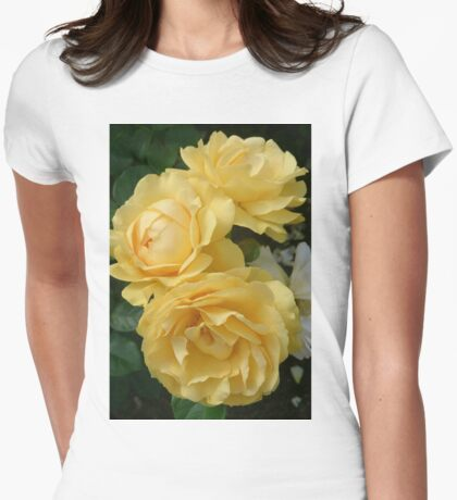 Absolutely Fabulous! Womens Fitted T-Shirt
