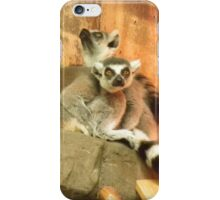 Metroparks Zoo 4 iPhone Case/Skin