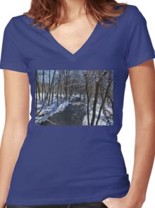 Winter In The Country Women's Fitted V-Neck T-Shirt