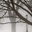 Victoria Park by Joshua Hakin