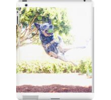 Super Nova iPad Case/Skin