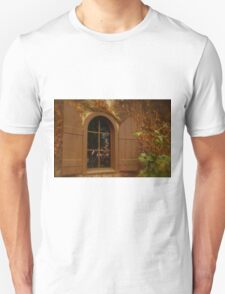 Window and Shutters Unisex T-Shirt