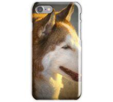 Portrait of a Husky iPhone Case/Skin