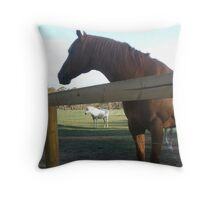 Doc - The Horse from The Snowy River Legend Throw Pillow