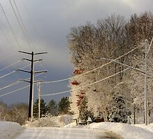 Wired for Snow by Thomas Sielaff