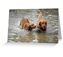 Oh come ON share the Ball Please! Greeting Card