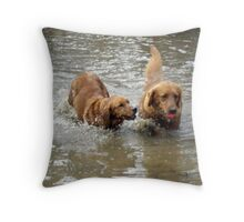 Oh come ON share the Ball Please! Throw Pillow