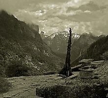 A Different View - Yosemite Valley by Dennis Jones - CameraView