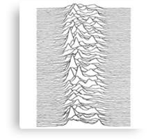 Pulsar waves - white&black Canvas Print