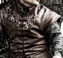 Lannister - Tyrion Sticker