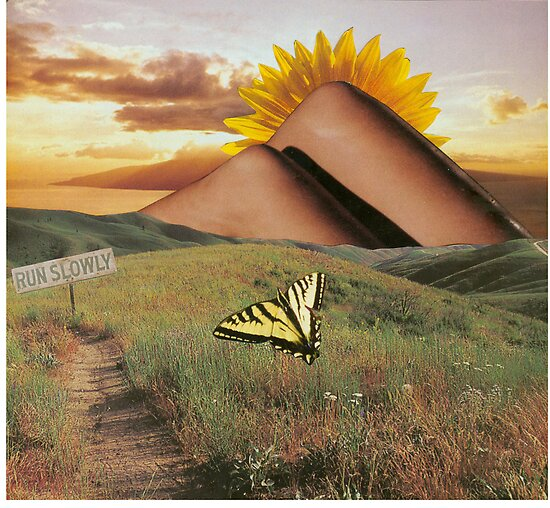 Run Slowly (collage) by Jan Morris