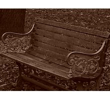 Bench of the ages... Photographic Print