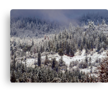 Below Freezing Canvas Print