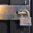 The Master Lock by Brian Gaynor