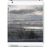 Winter on Lake Michigan iPad Case/Skin