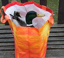 orange bag duck  by darren  shaw