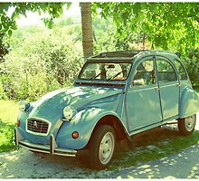 Blue 2CV by Sonja Zalar