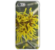 Springtime in Michigan iPhone Case/Skin