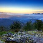 First light in the Blue Ranges by Vicki Moritz
