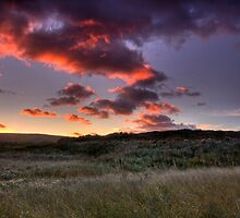 Morning Dunes of Inverness by EvaMcDermott