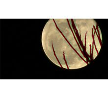 Moon Rise 009 Photographic Print