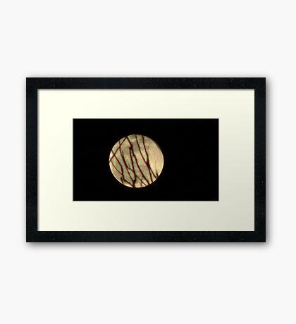 Moon Rise 010 Framed Print