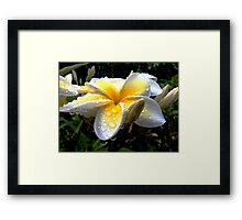 It Rained Today Framed Print