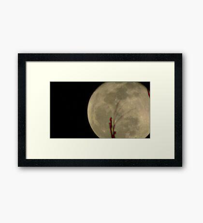 Moon Rise 014 Framed Print
