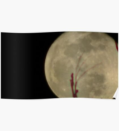 Moon Rise 014 Poster