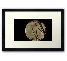Moon Rise 016 Framed Print