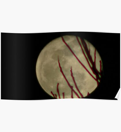Moon Rise 016 Poster