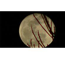 Moon Rise 016 Photographic Print