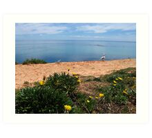 Port Noarlunga Cliff Art Print