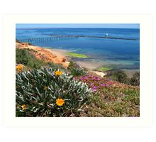 Port Noarlunga flowers and jettty Art Print
