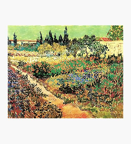 'Flowering Garden With Path' by Vincent Van Gogh (Reproduction) Photographic Print