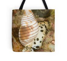 Sea Snail Tote Bag