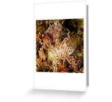 Pissed Cuttlefish Greeting Card