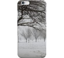 March snow in New York City  iPhone Case/Skin