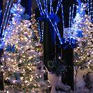 CHRISTMAS AUCTION #2 by gypsykatz