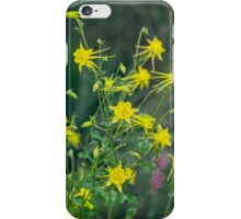 A Field of Golden Glory iPhone Case/Skin