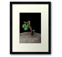 GIANT TREE THREATENS PLANET ZORG, Read all about it!  Framed Print