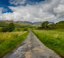 Road to the Gap of Dunloe  by Sam Fine