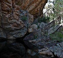 Hidden spring at Golton Gorge by Jennifer Craker
