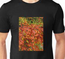 Echoes of Autumn Unisex T-Shirt